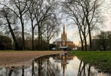 Best 5 Royal Parks in London